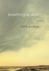 Beth Goobie Book Cover